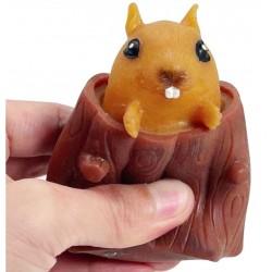 Gniotek wiewiórka